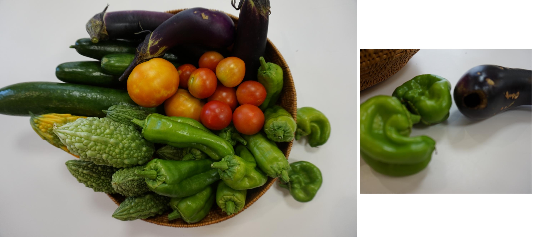 農園野菜01
